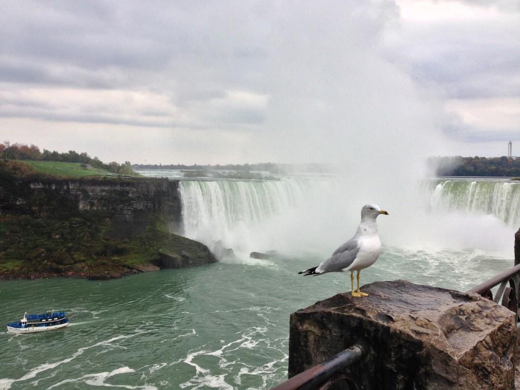 1019_Niagara Falls_21
