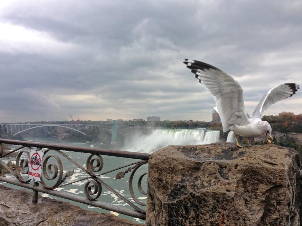 1019_Niagara Falls_25